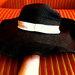 Sinequanone skrybėlaitė