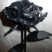 metalinės rožės