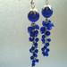 247.Mėlyni auskarai
