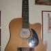 Akustine gitara