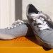 Melsvi batai
