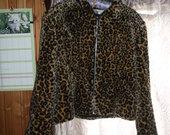 Nerealus tigriniai kailinukai-paltukas