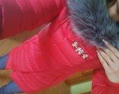 ryski raudona su sege striuke-paltas