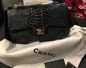 Chanel rankine
