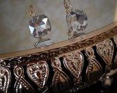 Prabangus auskariukai su skaidriu kristalu