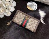 Gucci pinigine