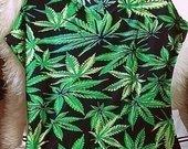 weed palaidine