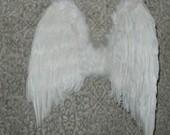 Angelų sparnai