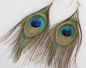 Povo plunksnų auskarai.nauji