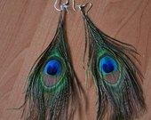 auskarai - povo plunksnos