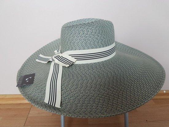 Didelė skrybėlė