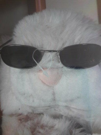 Mini akinukai