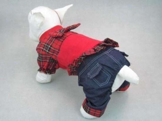 kombenzonas šuniukui