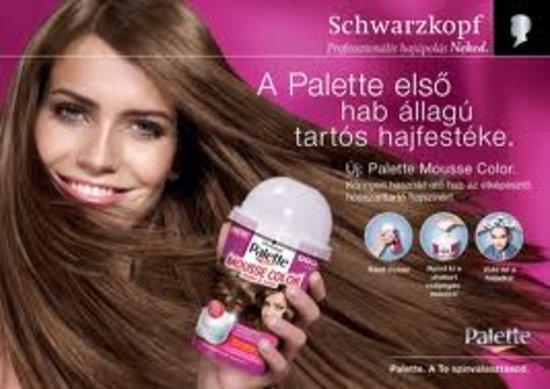 Palette Mousse Color plaukų dažai