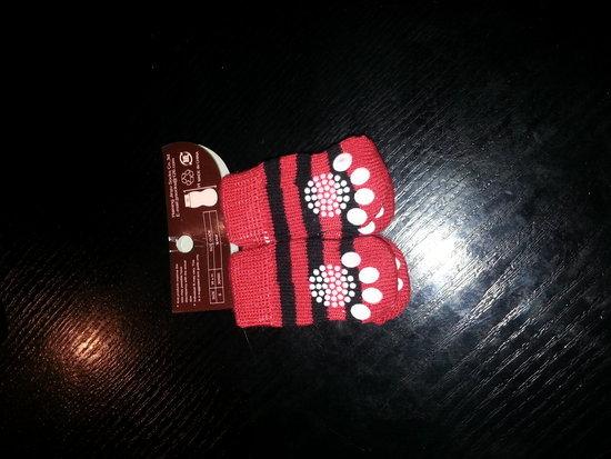 šuniuku kojinės
