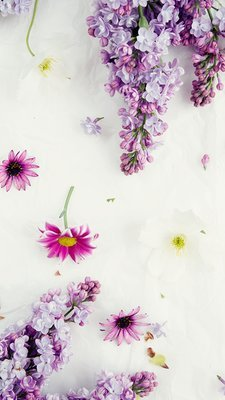 Floral Wallpapers Phone Spring